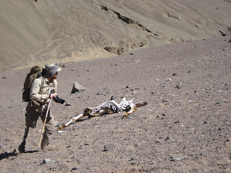 aconcagua-combat-wounded-veteran-challenge-27.jpg