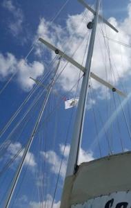 tampa-cuba-sailing-18