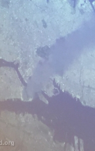 combat-wounded-veteran-challenge-scuba-2017-dom-gorie-astronaut-39