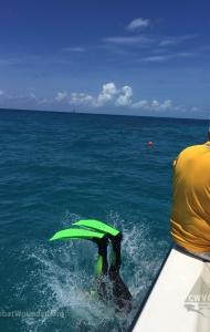 combat-wounded-veteran-challenge-scuba-2017-key-west-checkout-dives-80