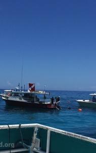 combat-wounded-veteran-challenge-scuba-2017-reef-restoration-media-13