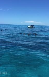 combat-wounded-veteran-challenge-scuba-2017-reef-restoration-media-5