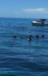 combat-wounded-veteran-challenge-scuba-2017-reef-restoration-media-9