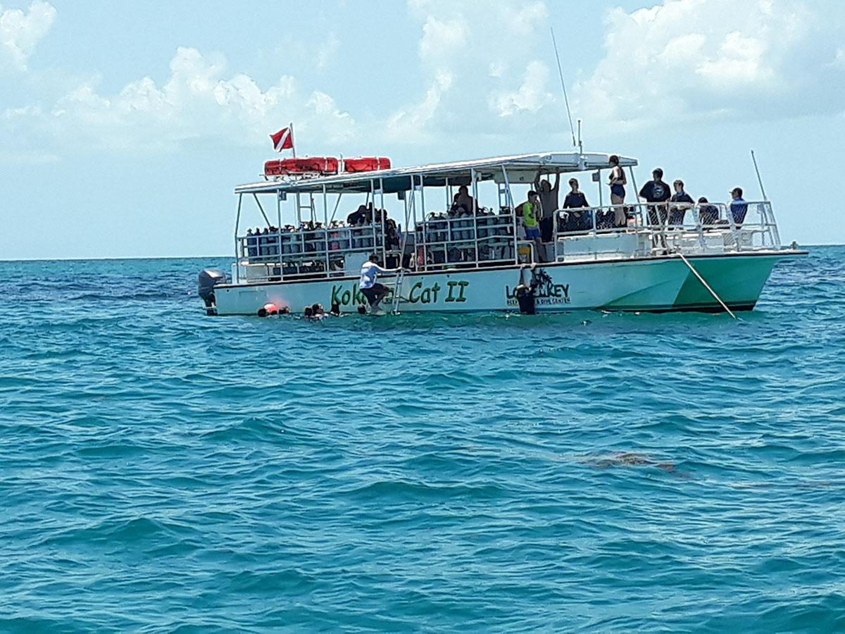 combat-wounded-veteran-scuba-reef-challenge-01
