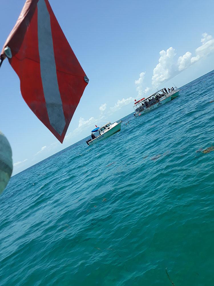 combat-wounded-veteran-scuba-reef-challenge-16