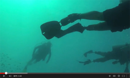 Video: SCUBAnauts, Combat Wounded Veterans and MOTE partner on coral restoration efforts