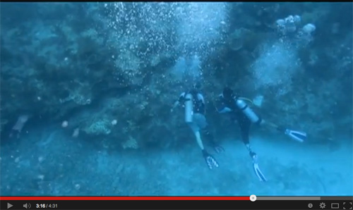 Video: Combat Wounded Veteran Challenge Reef Restoration 2013
