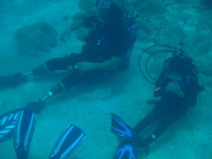 CWVC-Vet-scuba-in-sea