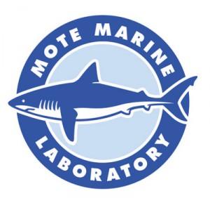 mote-lab