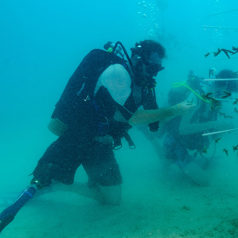 combat wounded veteran scuba diving